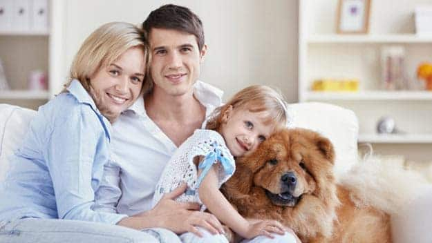 Wills & Trusts dog-young-family Direct Wills Stowmarket